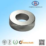Magneten de van uitstekende kwaliteit van het Neodymium