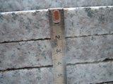 G664 Grantie pierre naturelle de granit rose de granit rouge