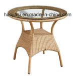 Im Freien/Rattan/Garten/Patio-Hotel-Möbel-Rattan-Stuhl u. Tisch eingestellt (HS1010C& HS 6080CDT)