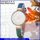 Reloj de las señoras clásicas del asunto del reloj de la aleación (Wy-092B)