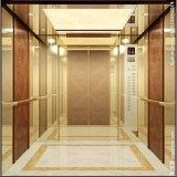 VvvfのFujizy 1.0m/S 1150kgの安いホーム承認されるエレベーターおよびセリウム