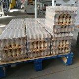 Pellicola di Shrink del LDPE per le merci del gruppo