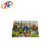 Promotie van 3D van het Raadsel van Jonge geitjes Grappige Plastic 9 Stukken Stuk speelgoed van het Spel