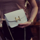مصمّم نمو سيّدة [بو] حقيبة يد مع [موق] صغيرة