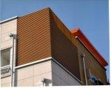 중국 제조자 WPC 건축재료 WPC 벽면, WPC Decking