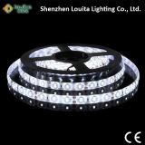 Striscia impermeabile del tubo 5630 LED di Silicont
