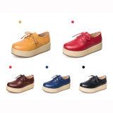 Высокое качество ботинок платья кожаный ботинок женщин (FTS1020-10)