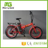 Bikes Китая e малого электрического велосипеда 48V 500W Ebikes складные с батареей лития