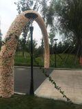طاقة - توفير [لد] كلّ في أحد شمعيّة حديقة ضوء مع [ليفبو4] بطارية
