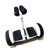 2017高品質の安い価格の自己のバランスの電気スクーター