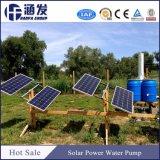 太陽エネルギーの噴水のプールの水ポンプ