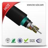 Jupe extérieure GYTA53 de double de câble fibre optique de câble d'Amored