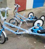 Risciò elettrico di Pedicab di nuovo di Degisn del Ce del certificato aiuto del pedale