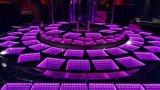 Diodo emissor de luz de venda Dance Floor de 2017 o melhor DMX para o partido do DJ
