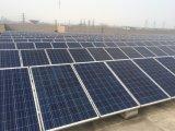 Poly module solaire du panneau solaire 100W pour la centrale