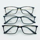 형식 금속 사원을%s 가진 플라스틱 강철 광학적인 Eyewear 안경알 프레임