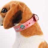 Halsband Op hoog niveau van de Poot van het nieuwe Product de Leuke, de Levering van het Huisdier