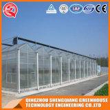 중국 상업적인 꽃/식물성 Multi- 경간 폴리탄산염 온실