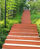 En plein air en plastique durable Rot-Proof bois Composite Decking Conseil