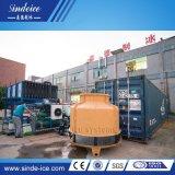Poupança de energia na fábrica20t grande máquina de fazer blocos de gelo comestível