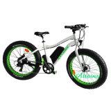 卸し売り電気バイクの750With48Vによって動力を与えられるハブモーターEバイクの脂肪質の電気自転車ブラシレスモーター