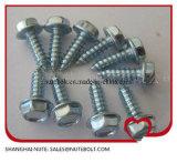 304 316 en acier inoxydable et acier zingué, rondelle à tête hexagonale de vis autotaraudeuses St2.2- ST6.3