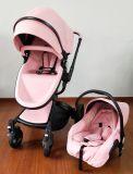 Hohe Landschaftseuropäischer Baby-Spaziergänger mit Auto-Sitz