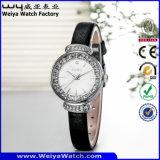 ODMの偶然の水晶方法女性腕時計(Wy-084A)