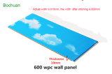 600mm Matériau de construction de décoration en bois composite en plastique étanche panneau mural