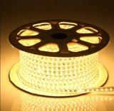 Hotel TIRA DE LEDS de luz (WHH-229)