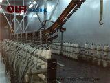 Kundenspezifische automatische Elektrophorese-Niederschlag-Beschichtung-Zeile für Metalteile