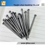 Galvanisierte Eisenbrad-Nägel für Hochbau