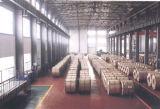 A36 Koudgewalste Stroken ASTM met Uitstekende kwaliteit