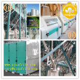 トウモロコシFlour MillかMaize Flour Mill/Corn Flour Milling Machine