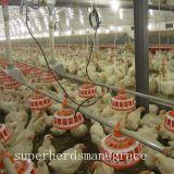 Птицы заводчика сельскохозяйственное оборудование для бройлеров заводчика производства