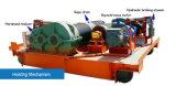 Doppio fornitore elettrico della fabbrica della gru a cavalletto della trave