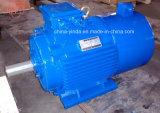 1CV-270CV TEFC (IP54) inversor deber Motor Eléctrico