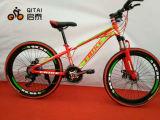 """20 da """" peças sobresselentes MTB da bicicleta montanha com velocidade da engrenagem 7"""