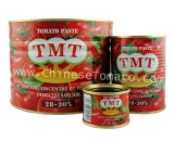 TMT marca barata con pasta de tomate en lata Embalaje