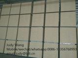Panneau de particules de l'épaisseur 30mm/36mm/40mm/44mm pour la porte