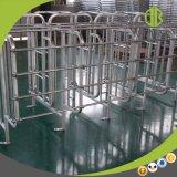 Stalle de vente chaude de porc de stalles de gestation de matériel de ferme de porc