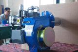 Bruciatori automatici del Doppio-Fuoco con alta efficienza