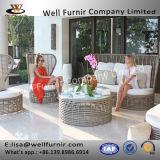Fornitore stabilito di Furnir T-010 di alta qualità dei materiali del sofà esterno moderno buono del rattan