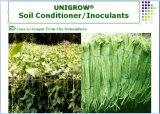 Fertilizzante del terreno di Unigrow sulla piantatura di verdure