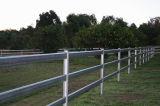 Rete fissa della rete fissa 3-Rail del tubo della rete fissa del cavallo,