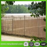 온실을%s 반대로 진디 그물 곤충 증거 그물이 50mesh 녹색 야채에 의하여 반대로 곤충 그물 설치한다
