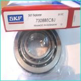 China Ball Bearing (6206 2RS) von Koyo Bearing