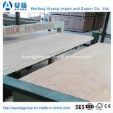 2440mm*1220mm para los muebles de madera contrachapada comercial