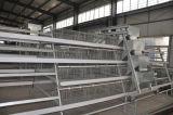 un tipo gabbia di Farme della strumentazione del pollo del pollame per uso dell'azienda agricola