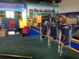 Автомат для резки плазмы CNC металла Gantry низкой стоимости